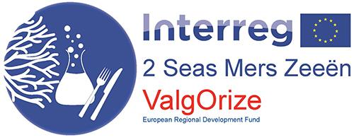 ValgOrize project logo